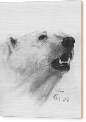 Scent In The Air Polar Bear Wood Print by Bob Patterson