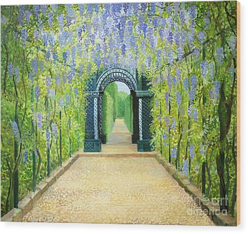 Schoenbrunn In Vienna The Palace Gardens Wood Print by Kiril Stanchev