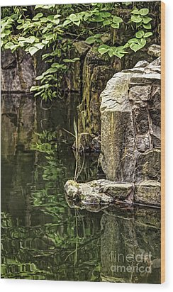 Wood Print featuring the photograph Scholar Garden Reflections by Vicki DeVico