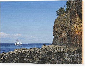 Schooner Sailing In The Bay Wood Print by Diane Diederich