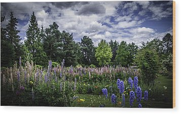 Schreiners Iris Gardens Wood Print
