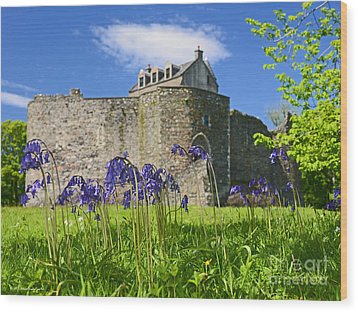 Scots Spring Bluebell Flowers At Scotland Dunstaffnage Castle  Wood Print by Nature Scapes Fine Art