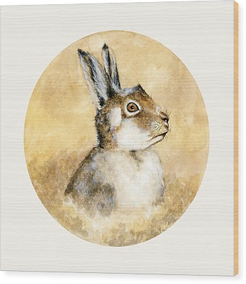 Scottish Hare Wood Print by Nathalie Amber