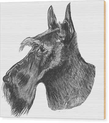 Scottish Terrier Dog Wood Print by Catherine Roberts