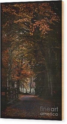 Wood Print featuring the photograph Scottish Woodland Walk by Liz  Alderdice