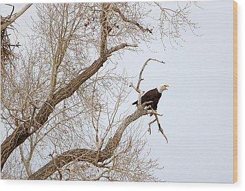Screamin' Eagle Wood Print
