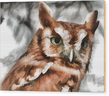 Wood Print featuring the photograph Screech Owl Photo Art by Constantine Gregory