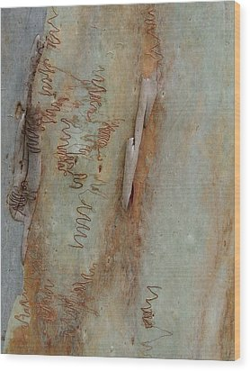 Scribbled Abstract Wood Print by Denise Clark