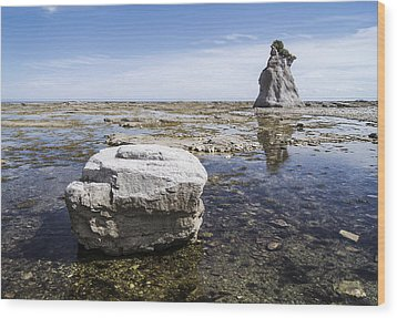 Wood Print featuring the photograph Sculpted Rock On Naked Isld by Arkady Kunysz