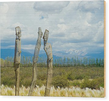 Sculpture In The Andes Wood Print
