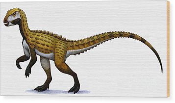 Scutellosaurus, An Early Jurassic Wood Print by H. Kyoht Luterman