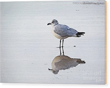 Wood Print featuring the photograph Sea Birds No.1 by Melissa Sherbon