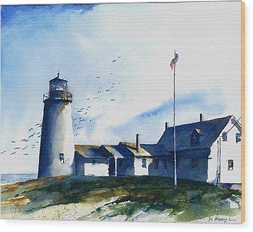 Sea Birds - Pemaquid Lighthouse Wood Print