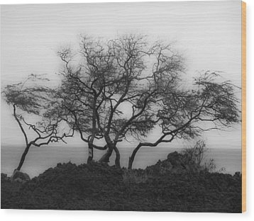 Wood Print featuring the photograph Sea Breeze 1 by Jim Snyder