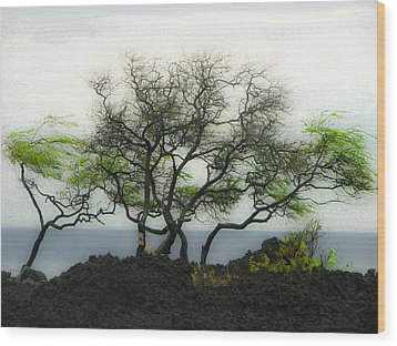Wood Print featuring the photograph Sea Breeze 2 by Jim Snyder