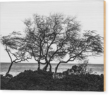 Wood Print featuring the photograph Sea Breeze 3 by Jim Snyder