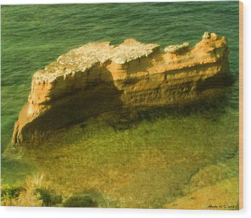 Wood Print featuring the photograph Sea Cliffs by Amanda Holmes Tzafrir