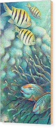 Sea Folk I - Sergeant Majors Wood Print by Nancy Tilles