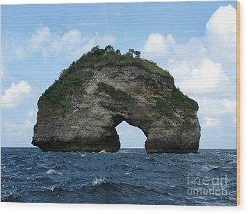 Wood Print featuring the photograph Sea Gate by Sergey Lukashin