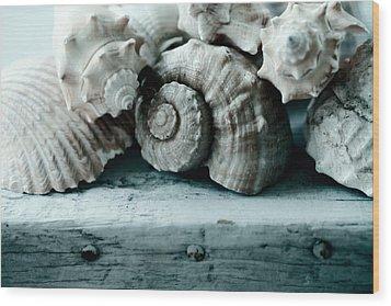 Sea Gifts Wood Print by Bonnie Bruno