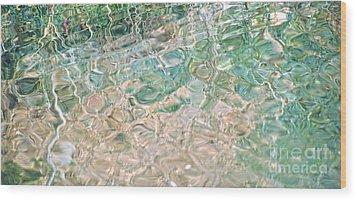 Sea Glass Wood Print by Cindy Lee Longhini