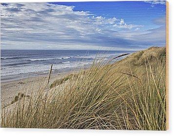 Sea Grass And Sand Dunes Wood Print