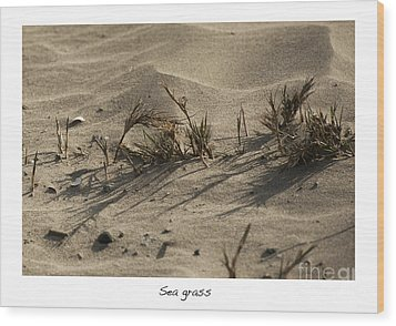 Sea Grass Wood Print by Artist and Photographer Laura Wrede