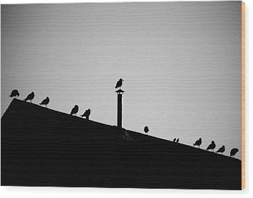 Sea Gulls In Silhouette Wood Print