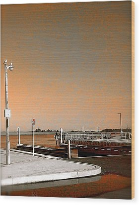 Wood Print featuring the photograph Sea Gulls Watching Over The Wetlands In Orange by Amazing Photographs AKA Christian Wilson