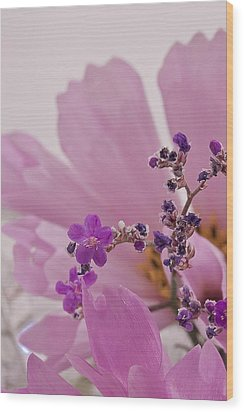 Wood Print featuring the photograph Sea Lavender Macro  by Sandra Foster