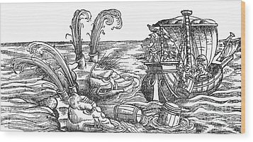 Sea Monsters Or Whales, 16th Century Wood Print by Photo Researchers