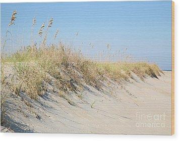 Sea Oat Serenity Wood Print by Suzi Nelson