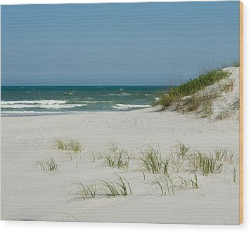 Sea Oats Wood Print by Denis Lemay