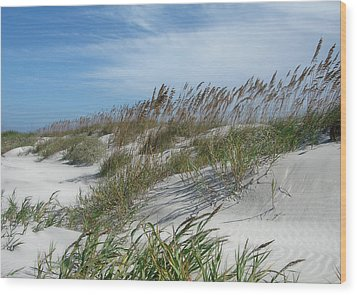 Wood Print featuring the photograph Sea Oats by Ellen Tully