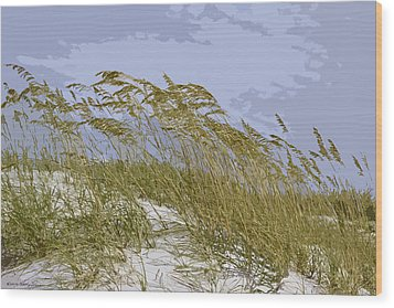 Wood Print featuring the photograph Sea Oats by Kathy Ponce