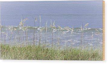 Sea Oats Panorama 1 Wood Print by Karen Stephenson