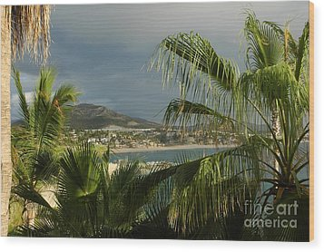Sea Of Cortez Wood Print by M West