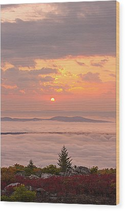 Wood Print featuring the photograph Sea Of Fog by Bernard Chen