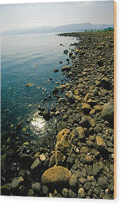 Sea Of Galilee Shore Wood Print by Dennis Cox WorldViews