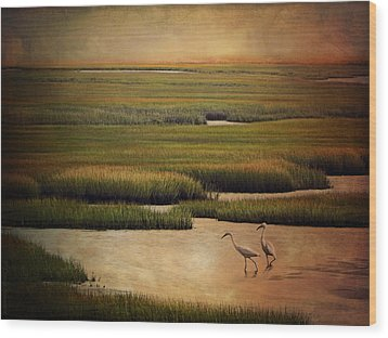 Sea Of Grass Wood Print by Lianne Schneider