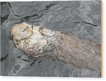 Sea Otter Wood Print by Brian Chase