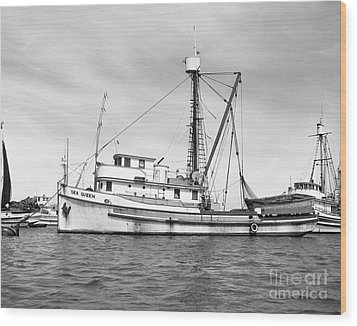 Purse Seiner Sea Queen Monterey Harbor California Fishing Boat Purse Seiner Wood Print