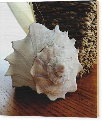 Wood Print featuring the photograph Sea Shell And Basket by Yolanda Rodriguez