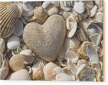 sea shell Heart Wood Print by Boon Mee