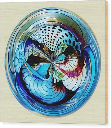 Sea Shell Orb Wood Print by Paulette Thomas
