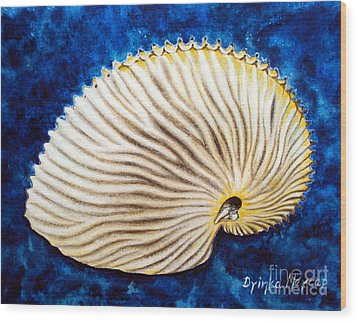 Sea Shell Original Oil On Canvas No.2. Wood Print by Drinka Mercep