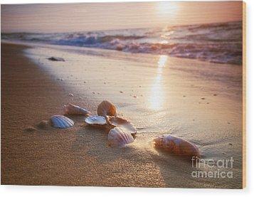Sea Shells On Sand Wood Print