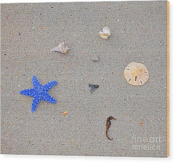 Sea Swag - Dark Blue Wood Print by Al Powell Photography USA