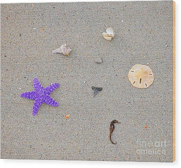 Sea Swag - Purple Wood Print by Al Powell Photography USA