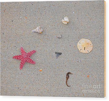 Sea Swag - Red Wood Print by Al Powell Photography USA